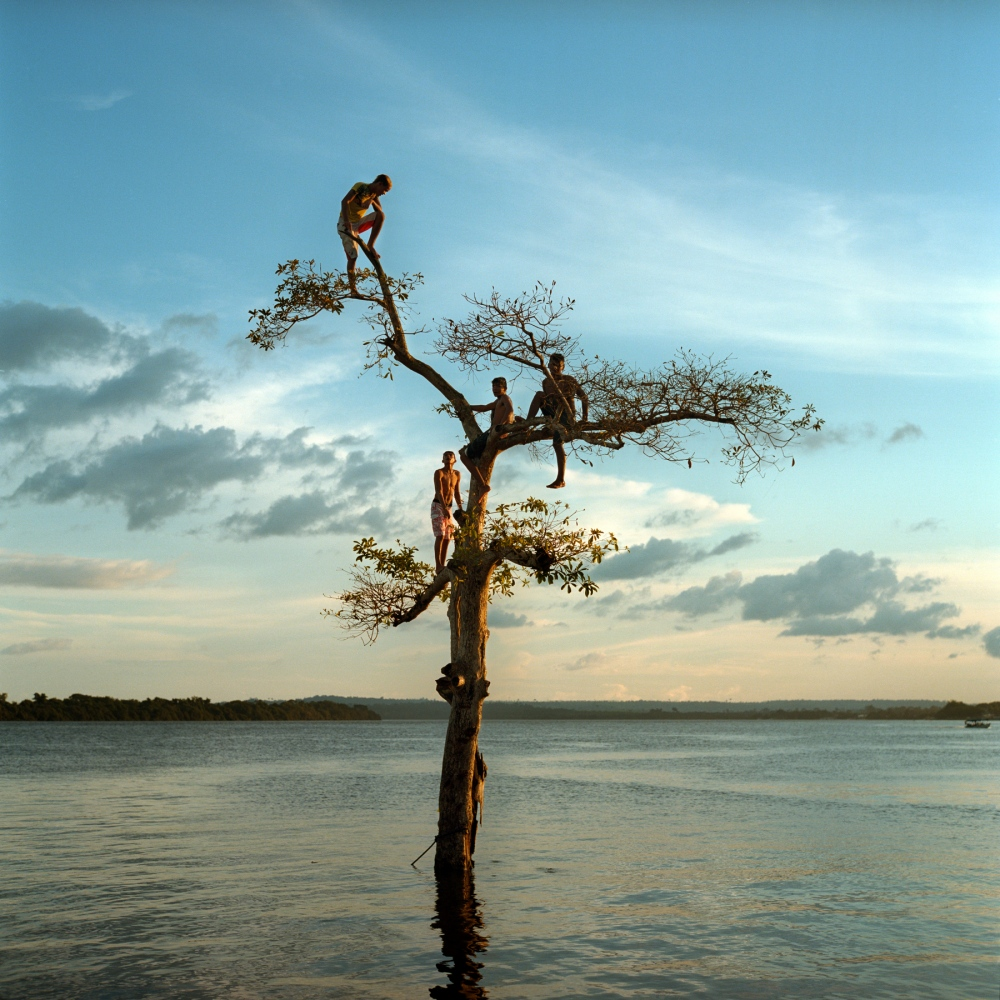 Un gruppo di ragazzi si arrampica su un albero lungo il fiume Xingu, vicino alla città di Altamira, Brasile. Un terzo della città verrà permanentemente sommersa in seguito al completamento della diga di Belo Monte – 2014 © Aaron Elkaim